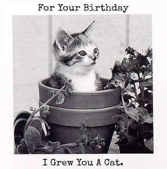 For Your Birthday I Grew You A Cat.jpg