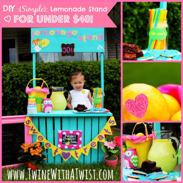Fun projects for kids for Kids lemonade stand plans